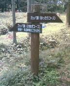 040904_112001.JPG